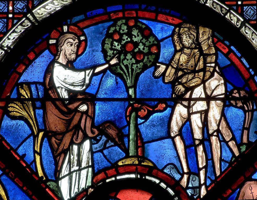 Dettaglio di una vetrata della Cattedrale di Chartes